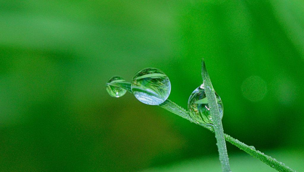 energia-renovable-hidrogeno-verde